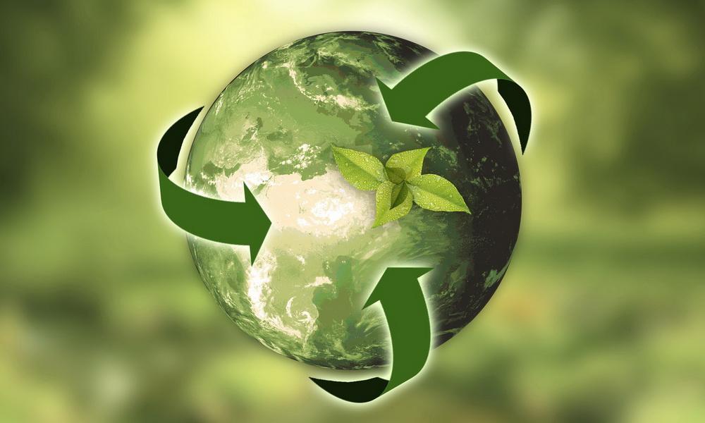 Один шаг к здоровью планеты