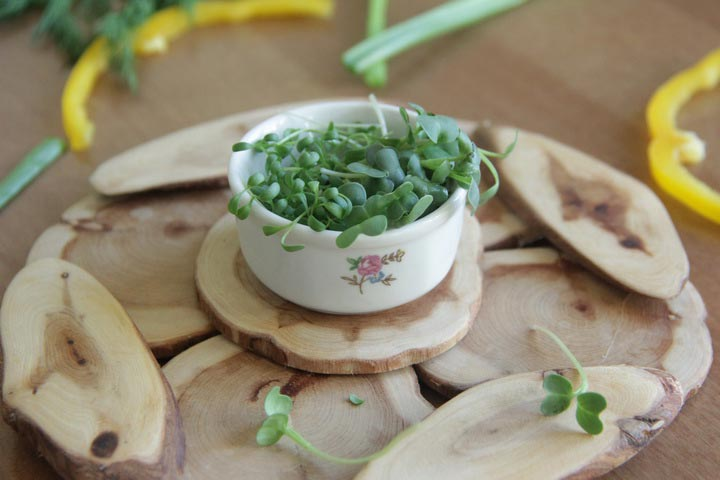 Микрогрины - маленькие растения с большой пользой