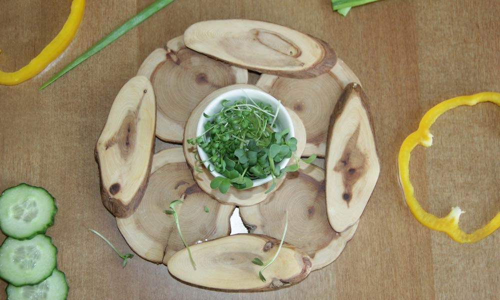 Маленькие растения с большой пользой - микрогрины